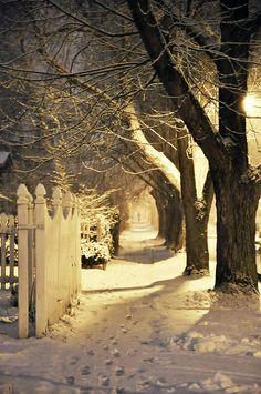 Snowy night in Buffalo, N.Y. 1-29-12 Holy Beautiful.
