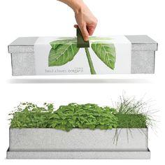 Organic Herb Windowsill Grow Box #MothersDay #OrganicHerbs #GiftsForCooks #GiftsForGardeners #MadeInAmerica
