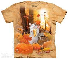 8634 Fall Kitty
