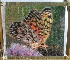 Butterfly - Beading Daily