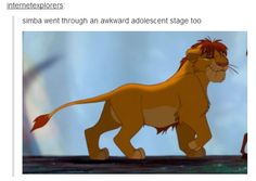 The Lion King On Pinterest Lion Hakuna Matata And