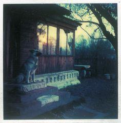 Andrei Tarkovsky's Polaroids – Instant Light | Graphicine