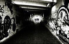 Il destino trova sempre la sua strada (P.V. Marone) ... orio, piemonte, italy, canon 1000D