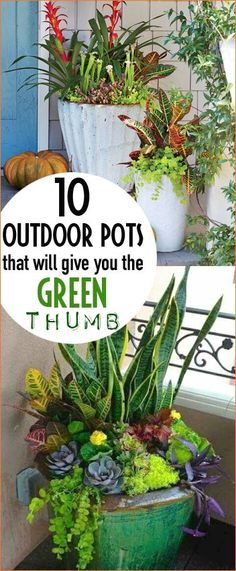 Outdoor Pots That Will Give You the Green Thumb. Tips and tricks to planting, maintaining and sorting porch pots. Lovely flower arrangements to brighten your outdoor spaces.