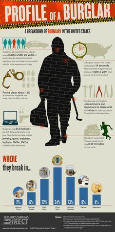 Profile of a Burglar: Burglary in the United States Infographic