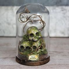 Terrarium Skulls Moss Miniature Skull Glass Dome Display Dark Home Decor Goth Curiosity Cabinet Goth Decor is part of Glass Display cabinet - ref shop home active 1 Dark Home Decor, Goth Home Decor, Glass Dome Display, Glass Domes, Skull Decor, Skull Art, Halloween Crafts, Halloween Decorations, Deco Cool