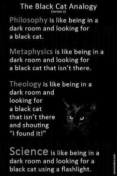 The Black Cat Analogy | Thinking about Philosophy