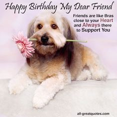 Top 35 Happy Birthday to My Dog Quotes .Sending birthday introductions has actually become a needed practice these days. It can be tough to find the best birthday desire for … Happy Birthday Special Friend, Happy Birthday Funny Cats, Free Birthday Card, Happy Birthday Wishes Quotes, Happy Birthday Celebration, Birthday Cake Card, Birthday Cards For Friends, Very Happy Birthday, Funny Birthday Cards