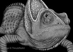 Printed on Kodak Professional Matt paper, this is a high quality digital print of an original pen & ink drawing done by Tim Jeffs. The print is 15