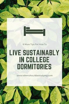 Personal life: It can be hard to live sustainably in a dorm room. This pin has great tips that can be carried on for the rest of your life. It gives ideas for decorating in your dorm room and other useful tips. Dorm Life, College Life, College Dorm Organization, Dorm Hacks, Teen Girl Bedding, Environmental Studies, College Dorm Bedding, Dorm Rooms, Dormitory