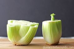 Did you know you can regrow food without using dirt? Stretch grocery dollars and save money by regrowing foods in just water! :: DontWastetheCrumbs.com