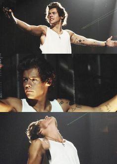Harry YES