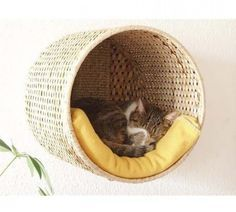 Use round baskets, maybe cover in rope, screw into wall, add blanket