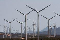 NOTÍCIAS DO TRECHO: O mercado brasileiro do setor eólico