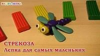 Уроки лепки для детей.Урок 28.  Бабочка — Яндекс.Видео