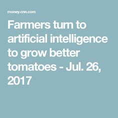 Farmers turn to artificial intelligence to grow better tomatoes - Jul. Artificial Intelligence Article, Ai Applications, Certificates Online, Gaming Computer, Gaming Setup, Weird Science, Machine Learning, Arduino, Farmers