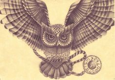 Owl drawing by AmyLou31 on DeviantArt