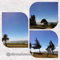 #reunionisland#sea#lamer#ile#iledelareunion#974#team974#instaisland#photography#photo#photoamateur#loveisland#lareunion#monile#trees#arbres#ciel#sky#borddemer#photoisland####gotoreunion#otélaréunion#974island# by aimachannelyt