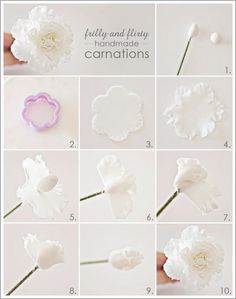 Gumpaste carnation tutorial (Half Baked the cake blog).