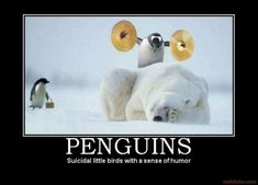 Penguins: Suicidal little birds with a sense of humor.