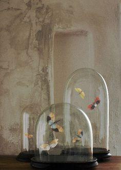 ,,** & vlinders...