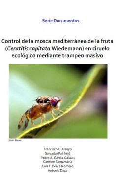 Control de la mosca mediterránea de la fruta (Ceratitis capitata Wiedeman) en ciruelo ecológico mediante trampeo masivo - publicaciones.poscosecha.com