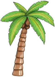 palm tree clipart image tropical coconut palm tree icon clipart rh pinterest com palm tree clipart border palm tree clipart png