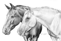 penciled horses