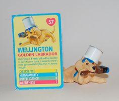 057_ Wellington