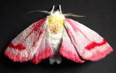 Fabric Sculpture Large Clouded Crimson Moth Textile Art  .................................................................................................. by YumiOkita   Etsy
