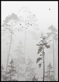 Foggy forest, poster in the group Posters & Prints / Black & white at Desenio AB (8352)