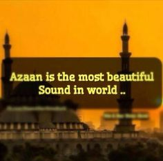 Read Online Surah Yasin of The Holy Quran Translation in English. Quran Word. Quran Quotes