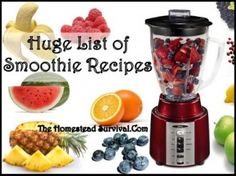 The Homestead Survival | Huge List of Delicious Smoothies Recipes | http://thehomesteadsurvival.com