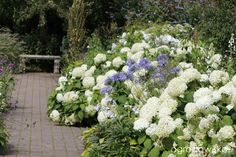 Galeria zdjęć - Jak stworzyć ogród marzeń - Ogrodowisko