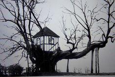 Winter treehouse