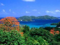 Trinidad and Tobago Isle