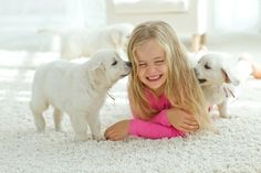 Tulsa's Voted Professional Upholstery and Furniture Cleaning Service. Call Us Today Upholstery Cleaning Tulsa - Tulsa Furniture Cleaning Steam Clean Carpet, How To Clean Carpet, Home Carpet, New Carpet, Upholstery Cleaning Services, Puppy Socialization, Carpet Installation, How To Clean Furniture, Furniture Cleaning