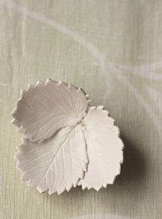 Using air-dry clay to make leaf bowls ...