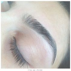 Eyebrow shape