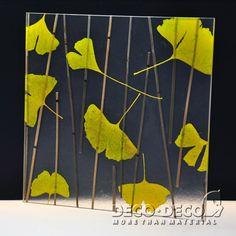Ginkgo,Deco Nature,DECO PANEL,DECO DECO,resin panel,architectural panel, translucent resin panel, decorative panel, laminated resin panel,