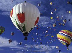 International Hot Air Balloon Festival, Albuquerque, New Mexico Photographic Print at Art.com