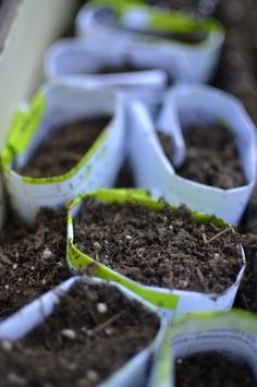 Start More Seeds    It is a good idea to start seeds in waves. You might have planted some earlier, and you might want to plant another set now. If temperatures are still too cold, try starting seeds in homemade cold frames. Make sure you save some for more planting later