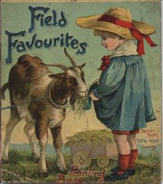 FIELD FAVORITES PAINTING BOOK