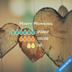 Minty Morning - Essential Oil Diffuser Blend