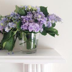 Some hydrangeas from last summer. #happysunday