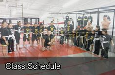 Legends MMA is located in Brampton and specializes in Martial arts, Boxing, Kickboxing and muay thai training for men, women and children. Martial Arts Training, Class Schedule, K 1, Kickboxing, Muay Thai, Basketball Court, My Favorite Things, Gallery, Roof Rack