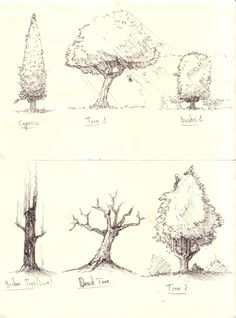 Trees and Bushes sketches