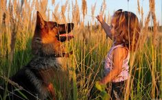 German Shepherd and friend Cute Cats And Dogs, I Love Dogs, Dogs And Puppies, Doggies, German Shepherd Wallpaper, Animals For Kids, Cute Animals, Wild Animals, Full Hd Pictures