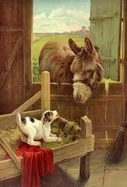 Google Image Result for http://karenswhimsy.com/public-domain-images/pictures-farm-animals/images/pictures-farm-animals-3.jpg