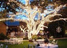 Árbol iluminado completamente Ideas para bodas al aire libre de noche